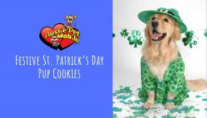 Festive St. Patrick's Day Pup Cookies